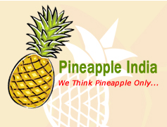 Pineapple Juice Manufacturer
